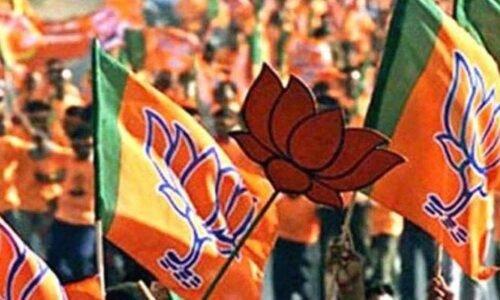 भाजपा की सभाओं में गूंज रहे 'जनसंख्या नियंत्रण करो' के नारे